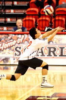 Mens Volleyball 2014